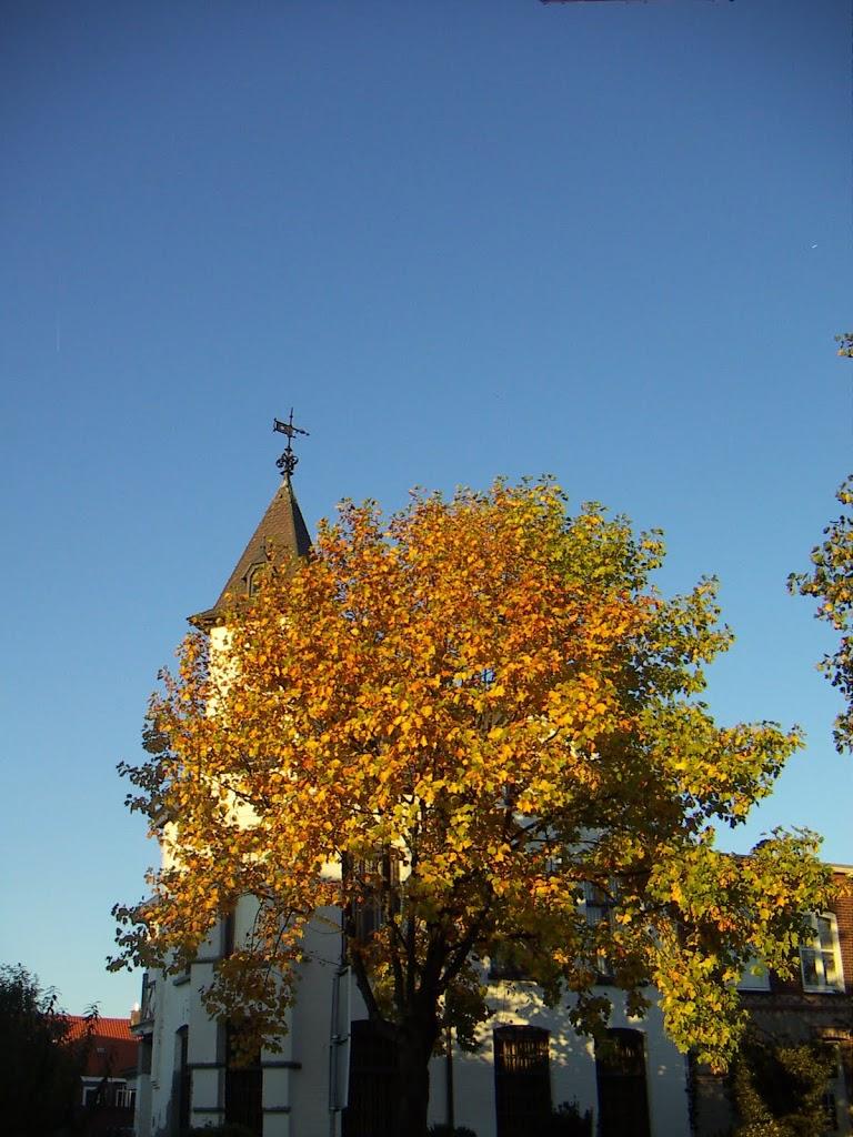 herfst buurtje